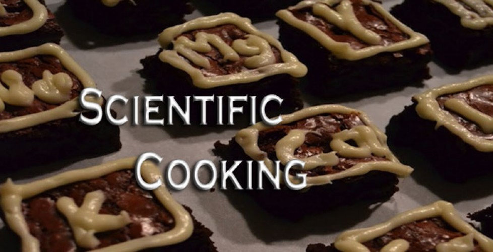 Does the Scientific Approach to Cooking Kill the Joy?