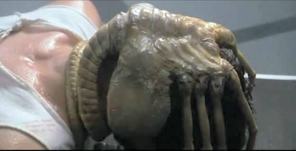 Alien_facehugger