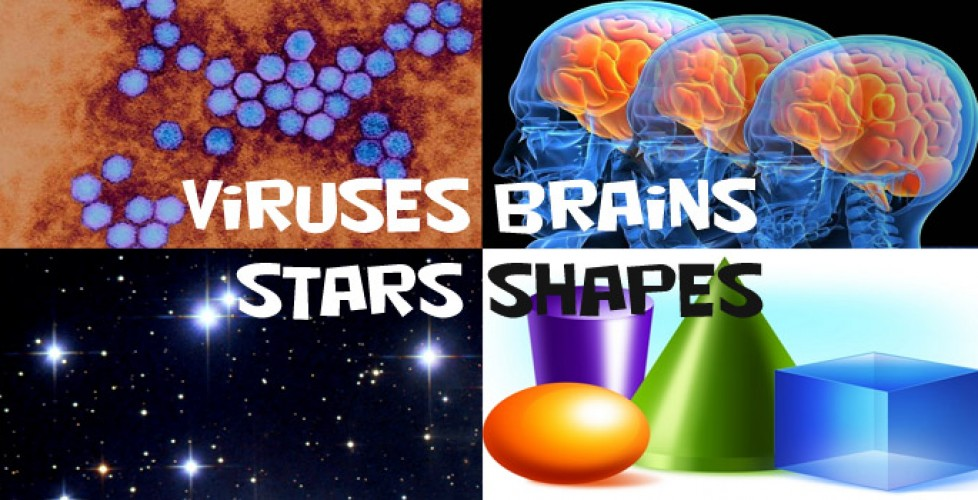 smorgasbord_stars_viruses_brains_wonderfest