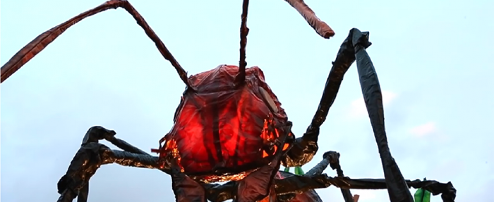 insects-good-bad-ugly-wonderfest