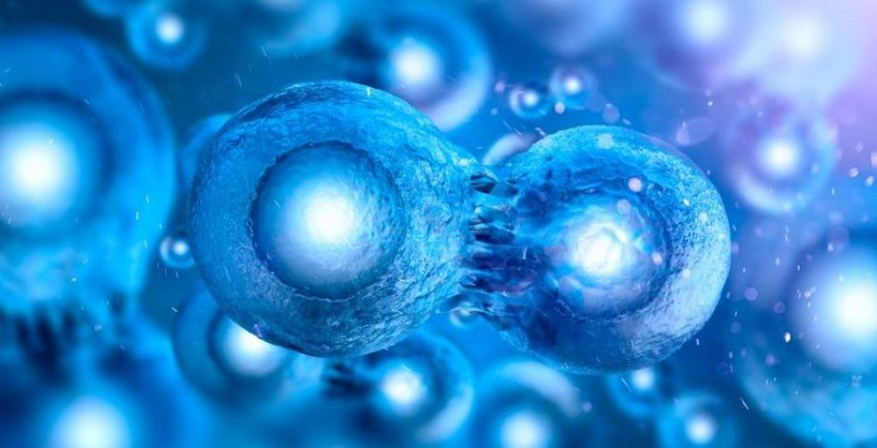 RegenerativeMedicine